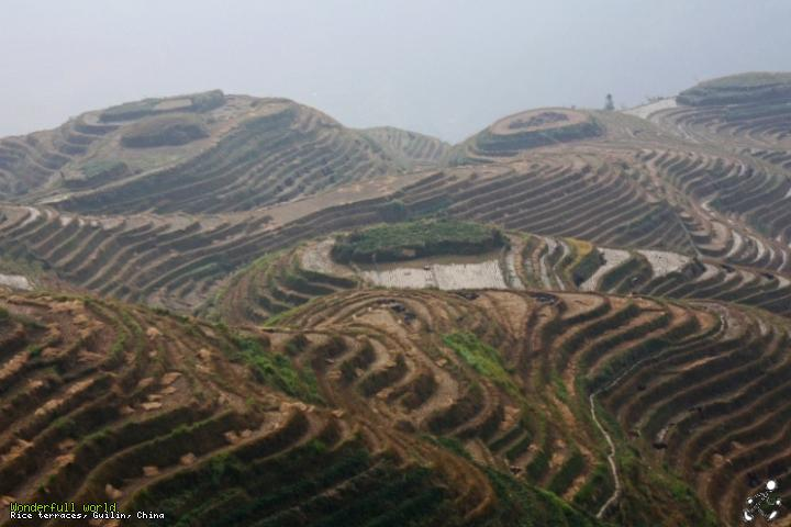 Rice terraces, Guilin, China